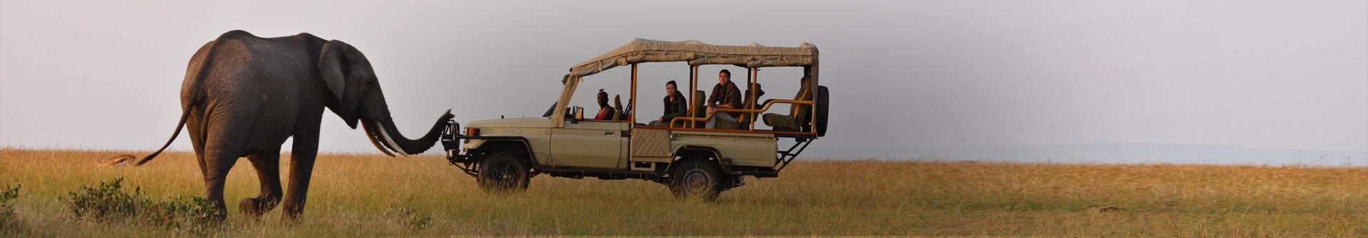 Maasai Mara 2020 travel deals