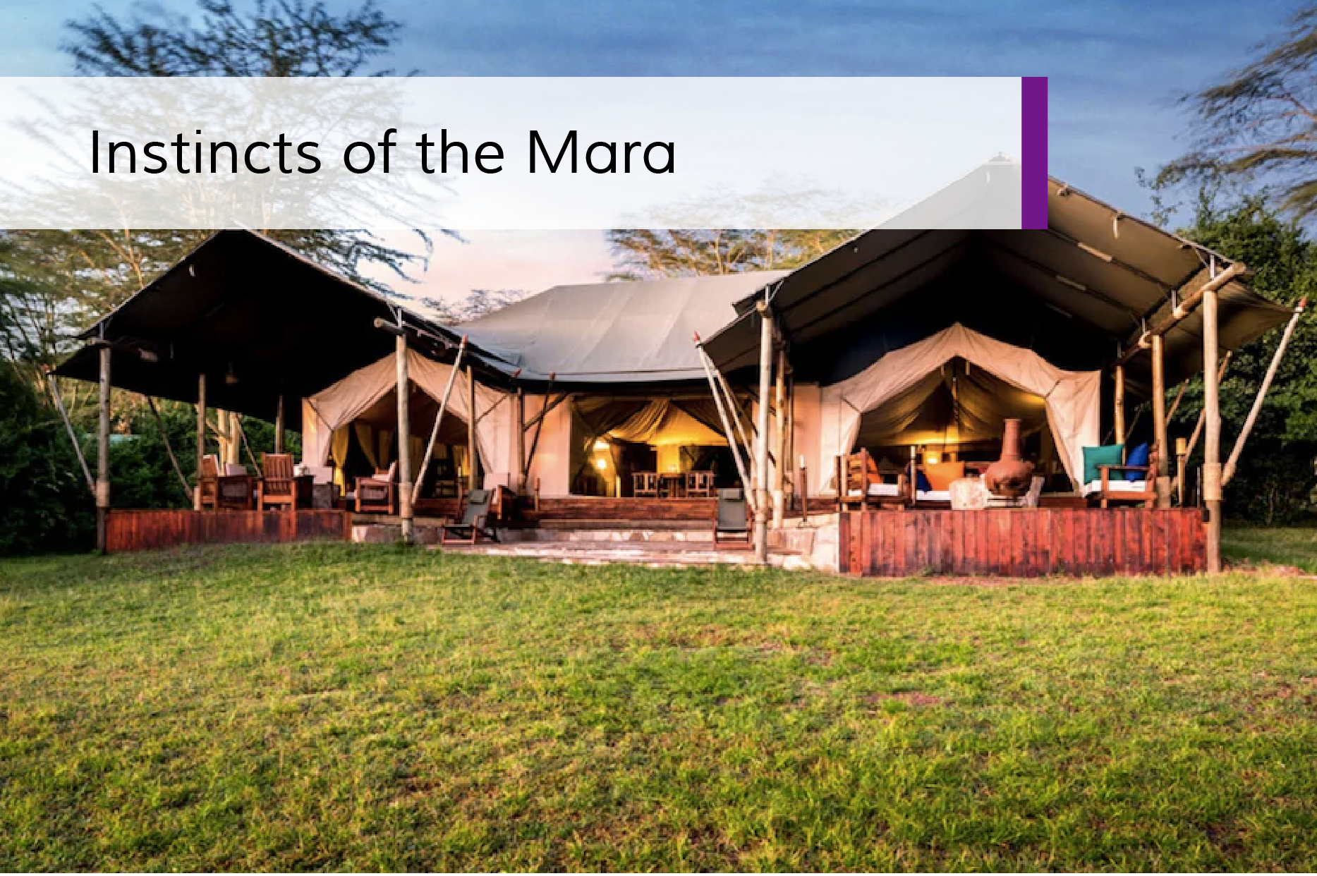 Instincts of the Mara